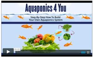 aquaponics-course